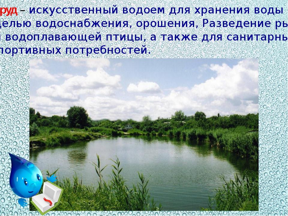 Пруд – искусственный водоем для хранения воды с целью водоснабжения, орошения...