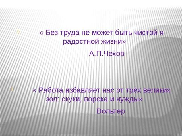 « Без труда не может быть чистой и радостной жизни» А.П.Чехов « Работа избав...