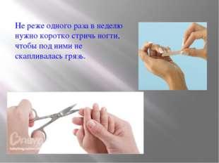 Не реже одного раза в неделю нужно коротко стричь ногти, чтобы под ними не ск