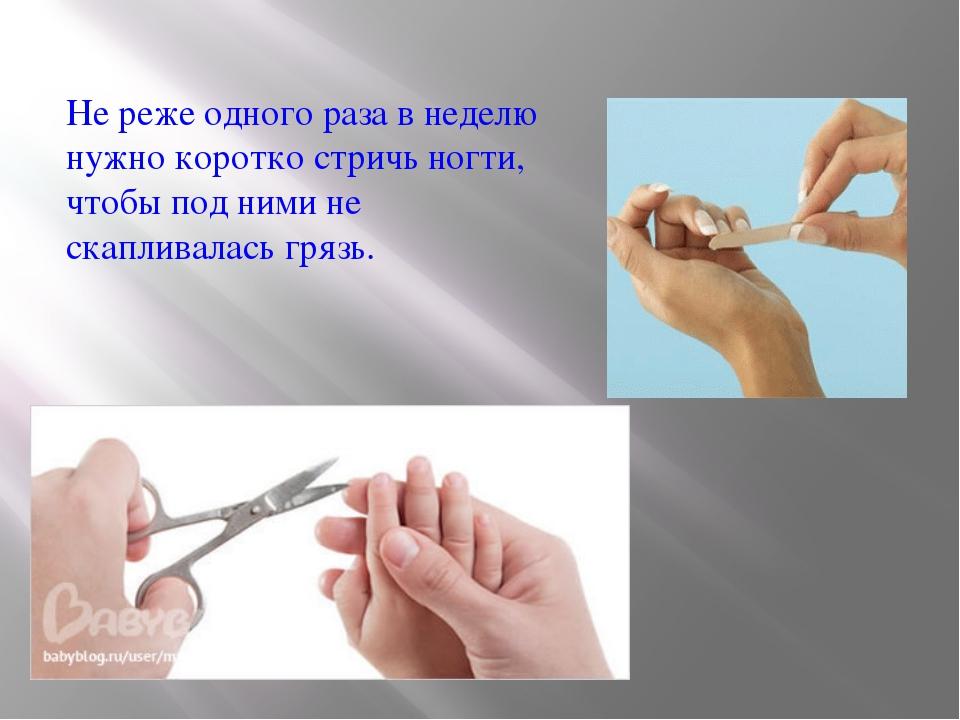 Не реже одного раза в неделю нужно коротко стричь ногти, чтобы под ними не ск...