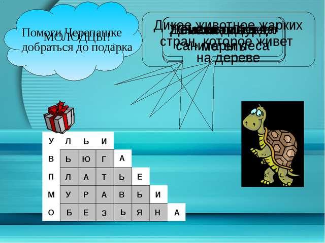 Помоги Черепашке добраться до подарка О М П В У Домики для пчел Снежная буря...