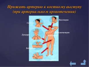 Прижать артерию к костному выступу (при артериальном кровотечении) Сонную Вис
