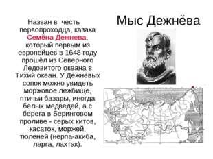 Мыс Дежнёва Назван в честь первопроходца, казака Семёна Дежнева, который перв
