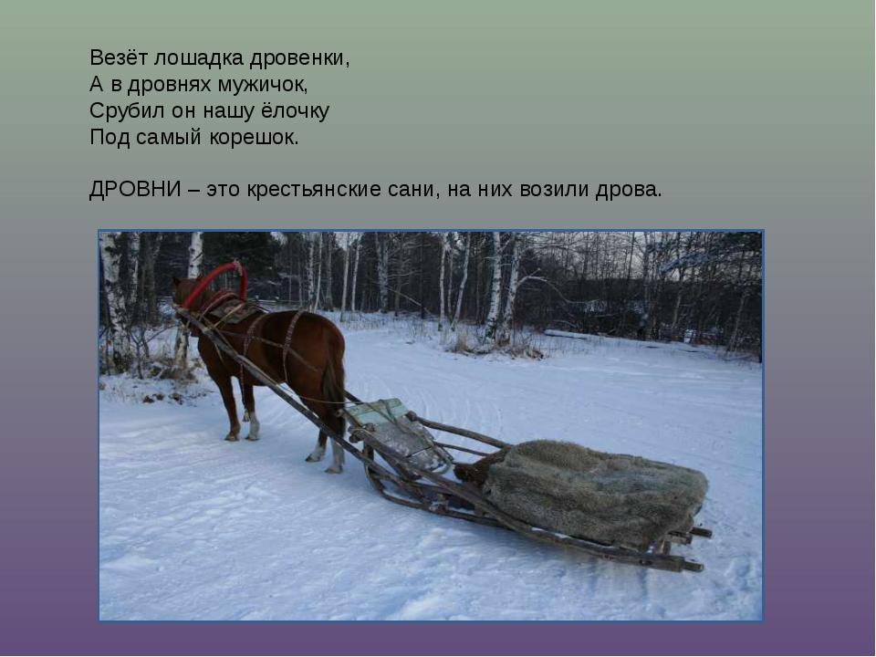 Везёт лошадка дровенки, А в дровнях мужичок, Срубил он нашу ёлочку Под самый...