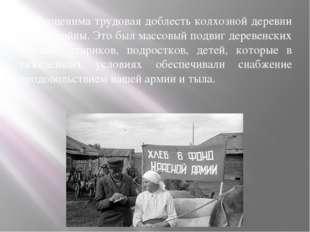 Неоценима трудовая доблесть колхозной деревни в годы войны. Это был массовый