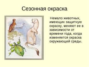 Сезонная окраска Немало животных, имеющих защитную окраску, меняют ее в завис