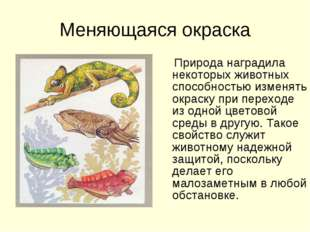 Меняющаяся окраска Природа наградила некоторых животных способностью изменять