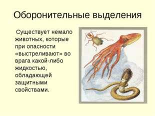 Оборонительные выделения Существует немало животных, которые при опасности «в