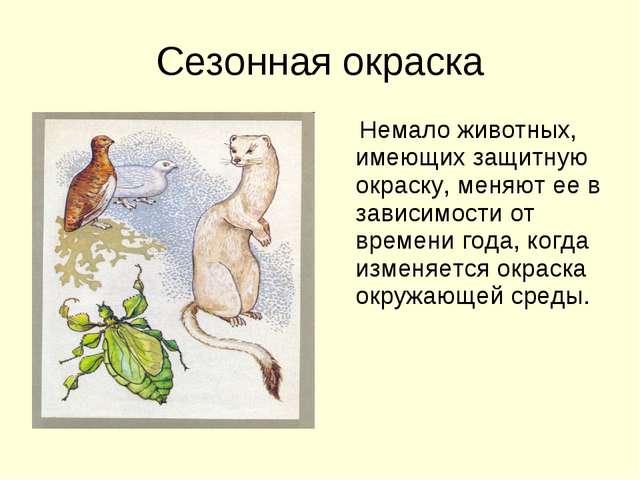 Сезонная окраска Немало животных, имеющих защитную окраску, меняют ее в завис...