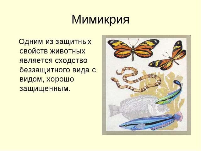 Мимикрия Одним из защитных свойств животных является сходство беззащитного ви...