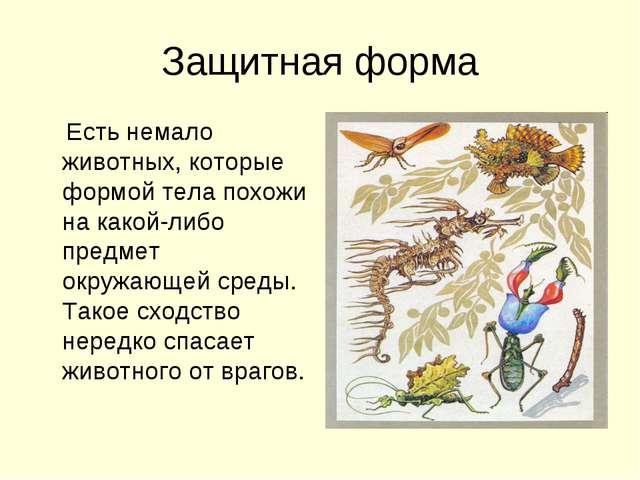 Защитная форма Есть немало животных, которые формой тела похожи на какой-либо...