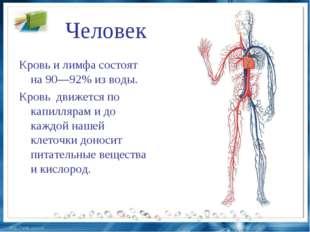 Человек Кровь и лимфа состоят на 90—92% из воды. Кровь движется по капилляр