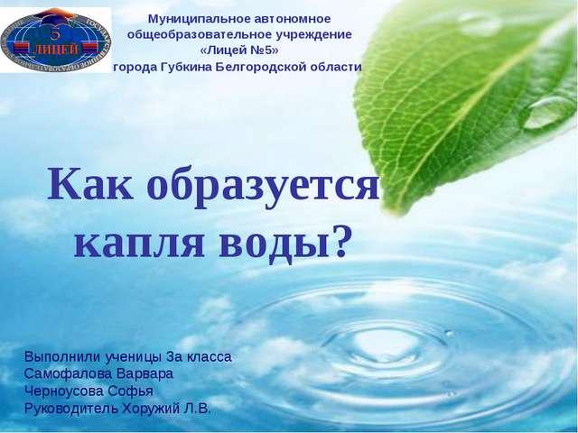 Как образуется капля воды? Муниципальное автономное общеобразовательное учреж...
