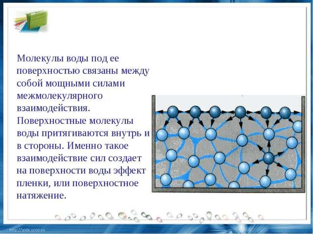 Молекулы воды под ее поверхностью связаны между собой мощными силами межмолек...