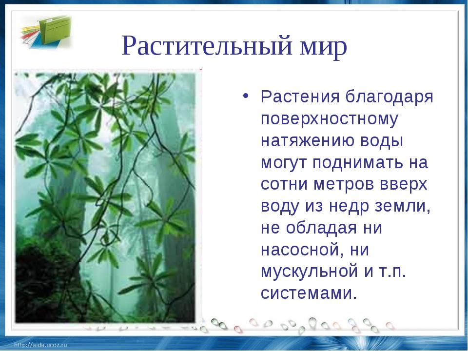 Растительный мир Растения благодаря поверхностному натяжению воды могут подни...