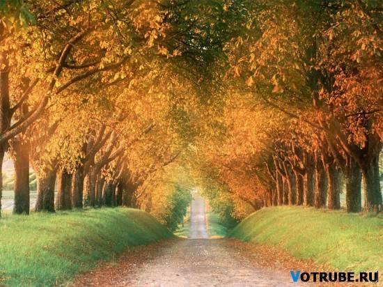 1255700804_osen-(www_votrube_ru)6.jpg