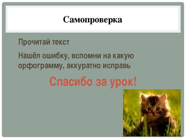 Самопроверка Прочитай текст Нашёл ошибку, вспомни на какую орфограмму, аккура...