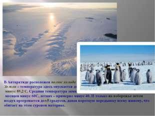 В Антарктиде расположен полюс холода Земли – температура здесь опускается до