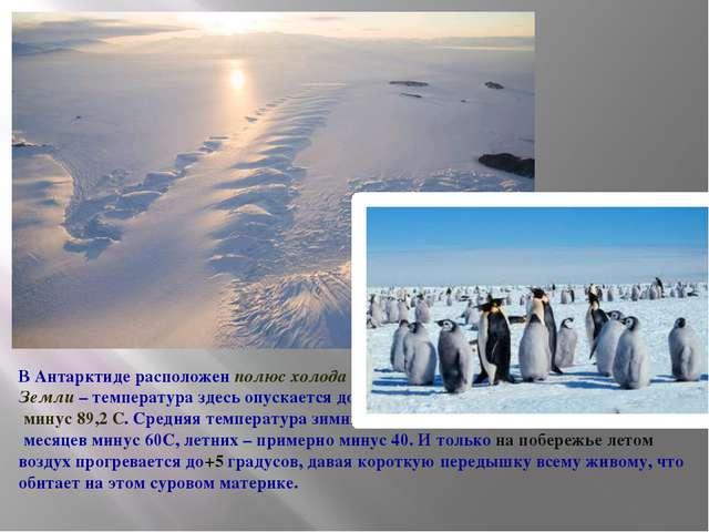 В Антарктиде расположен полюс холода Земли – температура здесь опускается до...