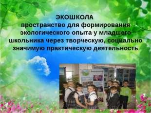 ЭКОШКОЛА пространство для формирования экологического опыта у младшего школьн
