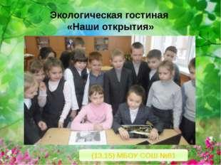Экологическая гостиная «Наши открытия» (13.15) МБОУ СОШ №81