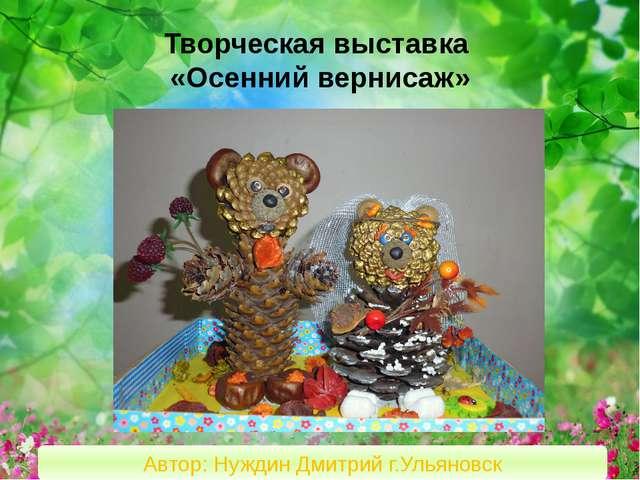 Творческая выставка «Осенний вернисаж» Автор: Нуждин Дмитрий г.Ульяновск