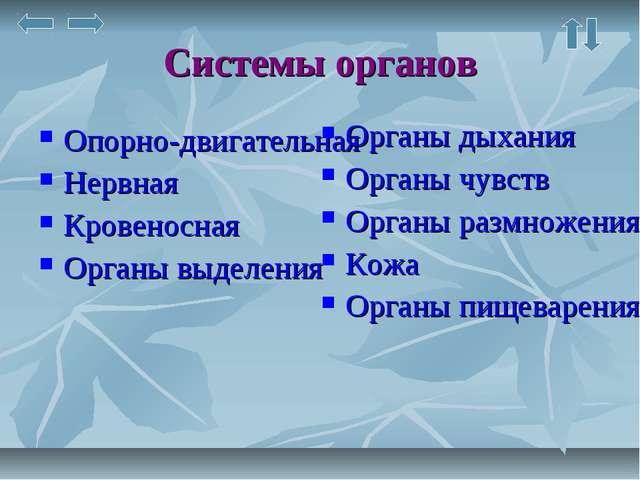 Системы органов Опорно-двигательная Нервная Кровеносная Органы выделения Орга...