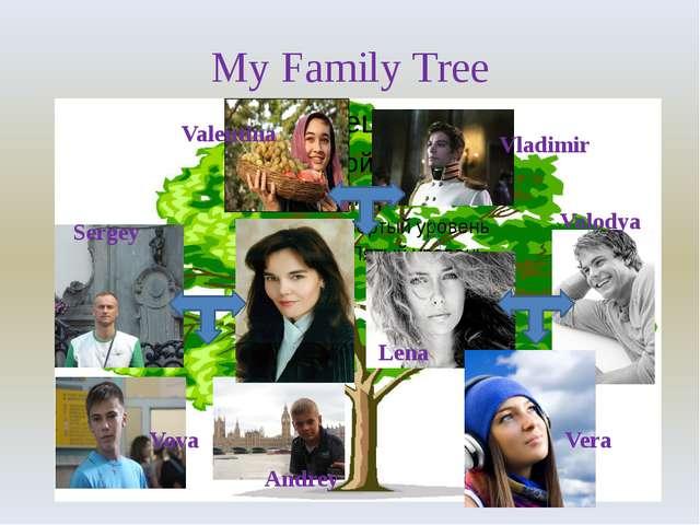 My Family Tree Valentina Vladimir Lena Volodya Vera Sergey Vova Andrey