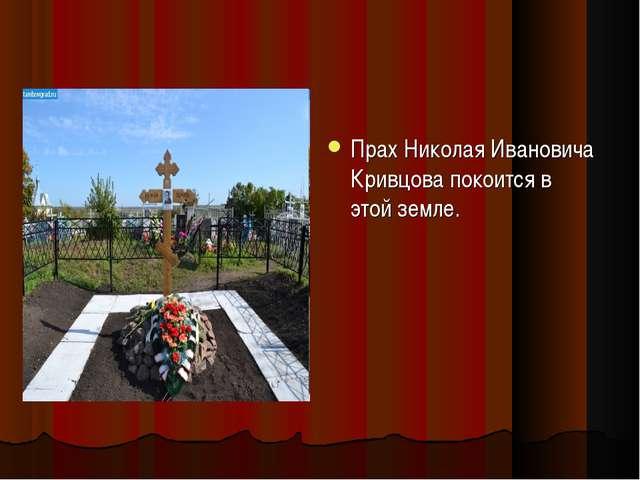 Прах Николая Ивановича Кривцова покоится в этой земле.