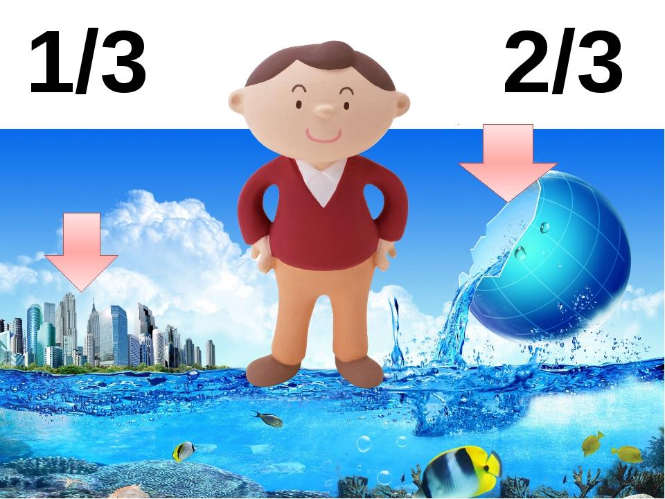 2/3 1/3 Поверхность земли- это 2/3 воды и 1/3 суши. Даже человек состоит на 8...