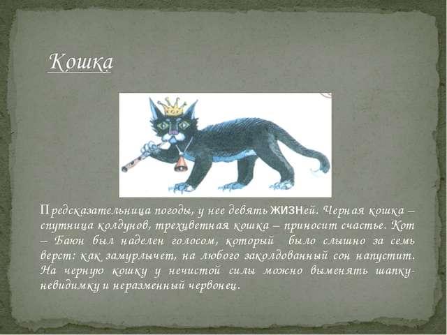 Предсказательница погоды, у нее девять жизней. Черная кошка – спутница колд...