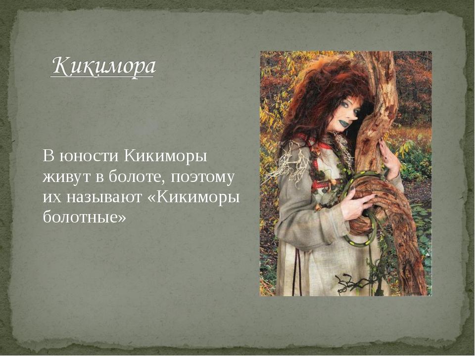 В юности Кикиморы живут в болоте, поэтому их называют «Кикиморы болотные»