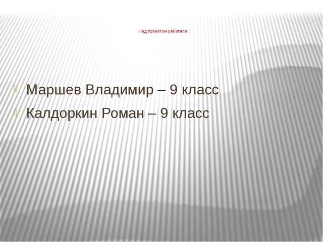 Над проектом работали : Маршев Владимир – 9 класс Калдоркин Роман – 9 класс
