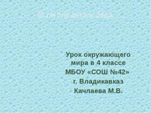Урок окружающего мира в 4 классе МБОУ «СОШ №42» г. Владикавказ Качлаева М.В.
