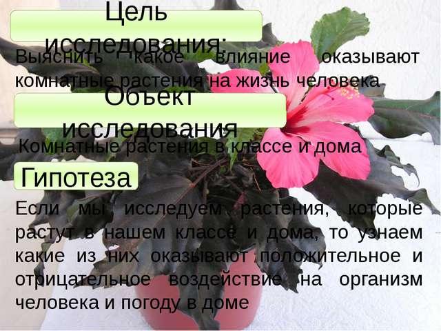 Цель исследования: Выяснить какое влияние оказывают комнатные растения на жиз...