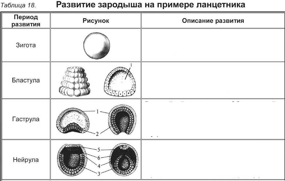 C:\Documents and Settings\RC_4\Мои документы\Мои рисунки\Безымянный9.bmp
