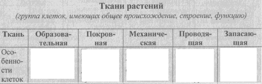 C:\Documents and Settings\RC_4\Мои документы\Мои рисунки\Безымянный3.bmp