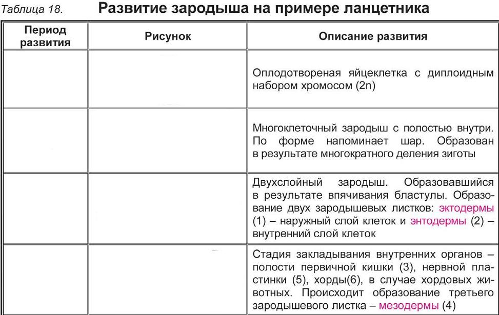 C:\Documents and Settings\RC_4\Мои документы\Мои рисунки\Безымянный8.bmp