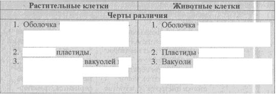 C:\Documents and Settings\RC_4\Мои документы\Мои рисунки\Безымянный5.bmp