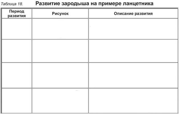 C:\Documents and Settings\RC_4\Мои документы\Мои рисунки\Безымянный22.bmp