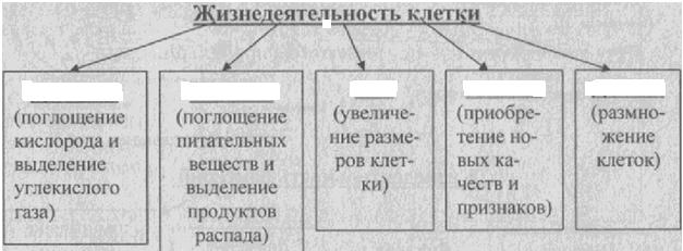 C:\Documents and Settings\RC_4\Мои документы\Мои рисунки\Безымянный.bmp