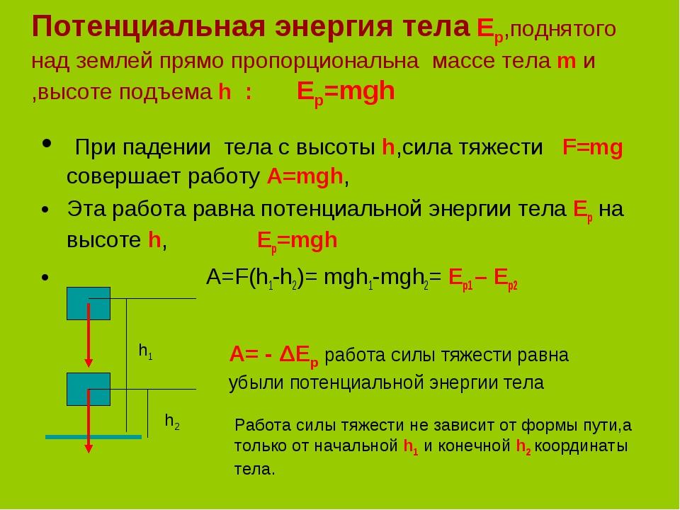Потенциальная энергия тела Ep,поднятого над землей прямо пропорциональна масс...