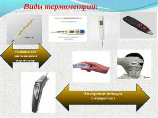 Виды термометрии: Медицинский максимальный термометр Электротермометры (элек
