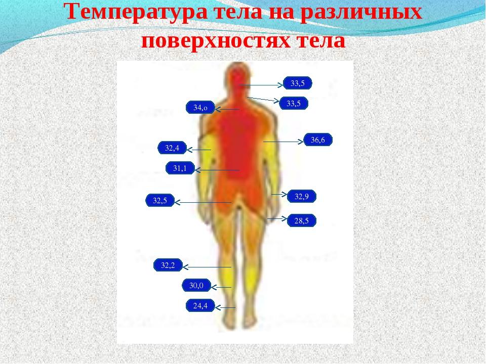 Температура тела на различных поверхностях тела 33,5 33,5 34,о 36,6 32,4 31,1...