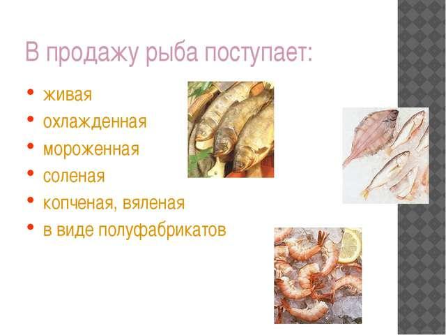В продажу рыба поступает: живая охлажденная мороженная соленая копченая, вяле...