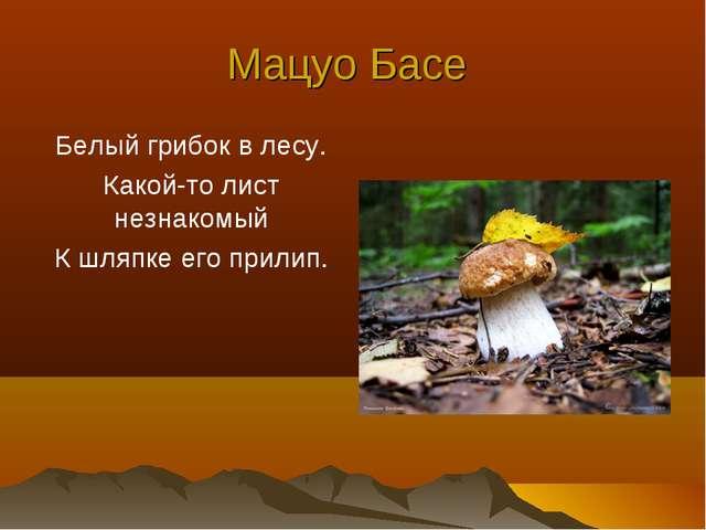 Мацуо Басе Белый грибок в лесу. Какой-то лист незнакомый К шляпке его прилип.