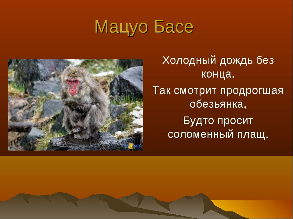Мацуо Басе Холодный дождь без конца. Так смотрит продрогшая обезьянка, Будто...