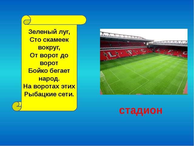 стадион Зеленый луг, Сто скамеек вокруг, От ворот до ворот Бойко бегает народ...