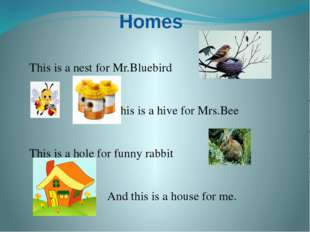 Homes This is a nest for Mr.Bluebird This is a hive for Mrs.Bee This is a hol