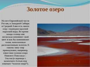 На юге Европейской части России, в Западной Сибири и Средней Азии есть много